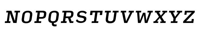 Input Serif Medium Italic Font UPPERCASE