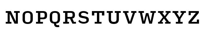 Input Serif Medium Font UPPERCASE