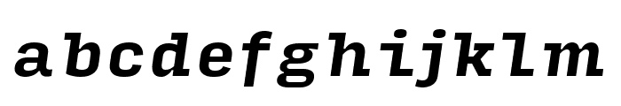 Input Serif Narrow Bold Italic Font LOWERCASE