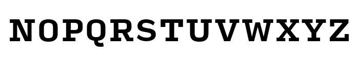 Input Serif Narrow Bold Font UPPERCASE