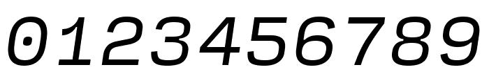 Input Serif Narrow Italic Font OTHER CHARS