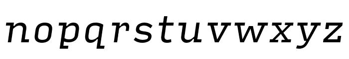 Input Serif Narrow Italic Font LOWERCASE