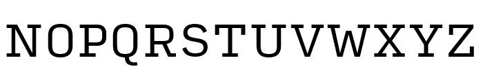 Input Serif Regular Font UPPERCASE