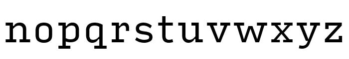 Input Serif Regular Font LOWERCASE