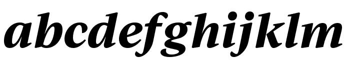 IvyJournal Bold Italic Font LOWERCASE