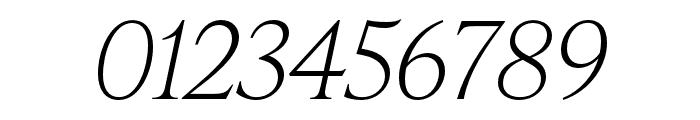 IvyPresto Headline Thin Italic Font OTHER CHARS