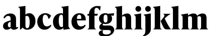 IvyPresto Text Bold Font LOWERCASE