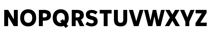 IvyStyle Sans Bold Font UPPERCASE