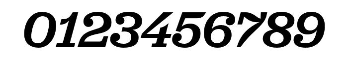 Jubilat Medium Italic Font OTHER CHARS