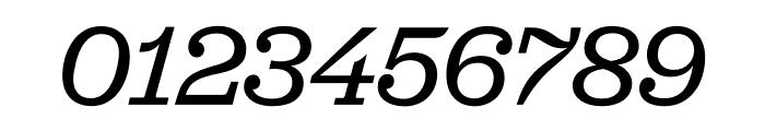 Jubilat Thin Italic Font OTHER CHARS
