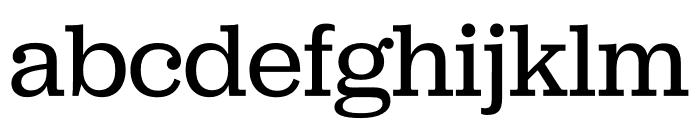 Jubilat Thin Font LOWERCASE