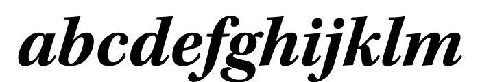 Kepler Std Bold Italic Display Font LOWERCASE