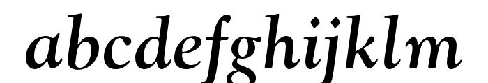 LTC Goudy Oldstyle Pro Bold Italic Font LOWERCASE