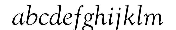 LTC Goudy Oldstyle Pro Italic Font LOWERCASE