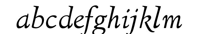 LTC Italian Old Style Pro Italic Font LOWERCASE