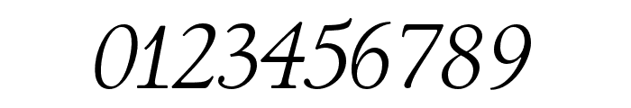 LTC Italian Old Style Pro Light Italic Font OTHER CHARS