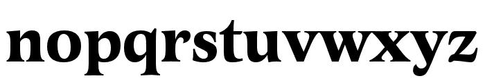 Latienne Pro Bold Font LOWERCASE