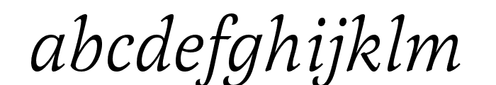 Latienne Pro Italic Font LOWERCASE