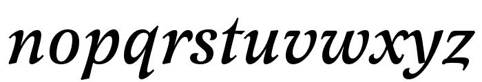 Latienne Pro Medium Italic Font LOWERCASE