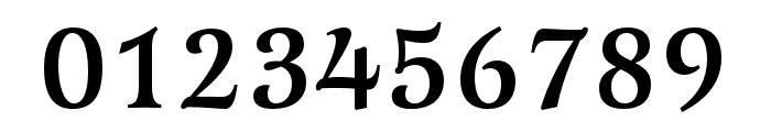 Latienne Pro Medium Font OTHER CHARS