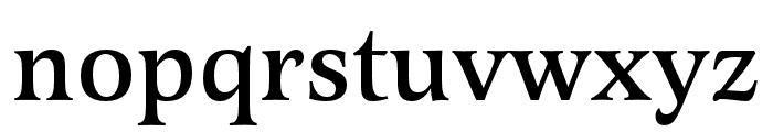 Latienne Pro Medium Font LOWERCASE