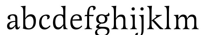 Latienne Pro Regular Font LOWERCASE