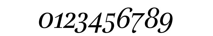 Lavigne Text Regular Italic Font OTHER CHARS