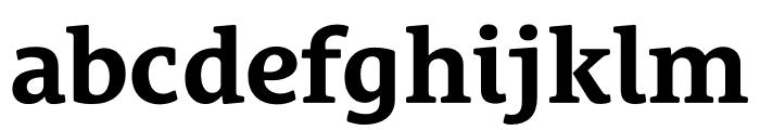 Le Monde Courrier Std Bold Font LOWERCASE