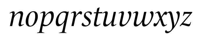 Le Monde Livre Std Italic Font LOWERCASE