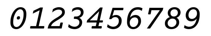 Lexia Mono Italic Font OTHER CHARS