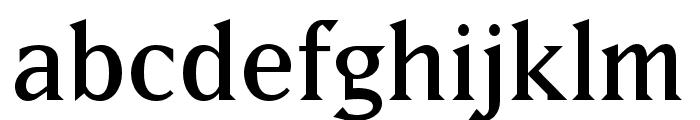 Matrix II Ext OT Semi Narrow Font LOWERCASE