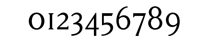 Matrix II Script OT Book Font OTHER CHARS