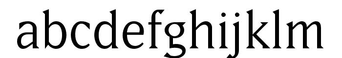 Matrix II Script OT Book Font LOWERCASE