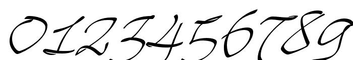 Mayence Premium Regular Font OTHER CHARS