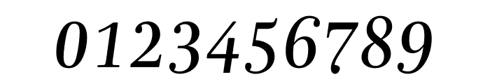 Mencken Std Italic Font OTHER CHARS