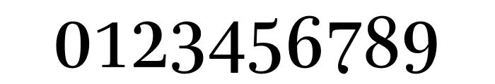 Mencken Std Regular Font OTHER CHARS