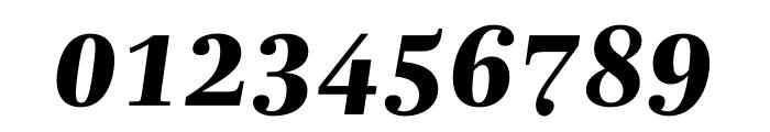 Mencken Std Text ExtraBold Italic Font OTHER CHARS
