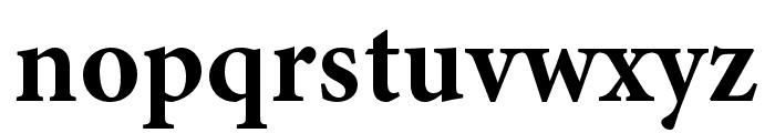 Minion 3 Bold Font LOWERCASE