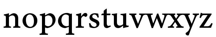 Minion 3 Caption Medium Font LOWERCASE