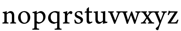 Minion 3 Caption Regular Font LOWERCASE
