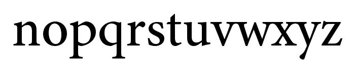 Minion 3 Medium Font LOWERCASE