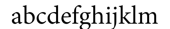 Minion 3 Regular Font LOWERCASE