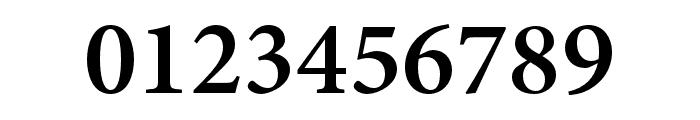 Minion 3 Semibold Font OTHER CHARS