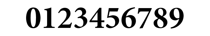 Minion 3 Subhead Bold Font OTHER CHARS