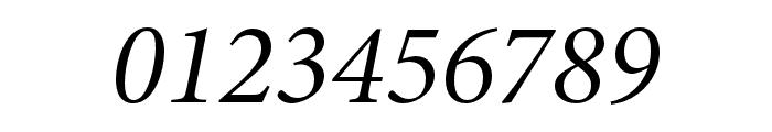 Minion 3 Subhead Italic Font OTHER CHARS