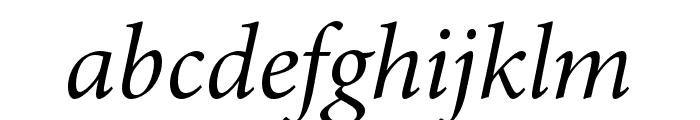 Minion 3 Subhead Italic Font LOWERCASE
