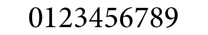 Minion 3 Subhead Medium Font OTHER CHARS