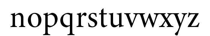 Minion 3 Subhead Medium Font LOWERCASE