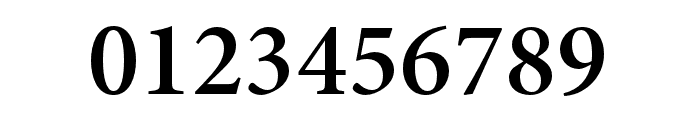 Minion 3 Subhead Semibold Font OTHER CHARS