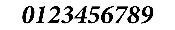 Minion Pro Bold Italic Display Font OTHER CHARS